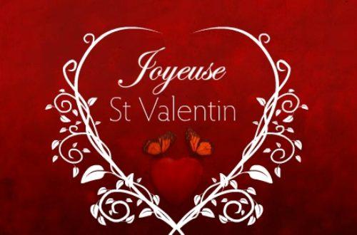 Article : Saint Valentin, y a de l'amour dans l'air !