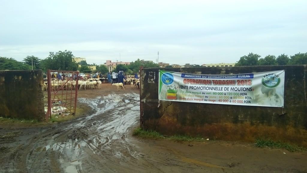 """Espace de vente promotionnelle de moutons à l""""ACI 2000 (filière gouvernementale) - Crédit : Kibaru Online"""